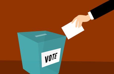 bầu cử